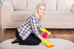 Commercial Carpet Cleaner in Highbury, N1