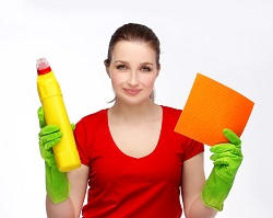 Domestic House Cleaners in Highbury, N5